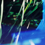 anh_banner